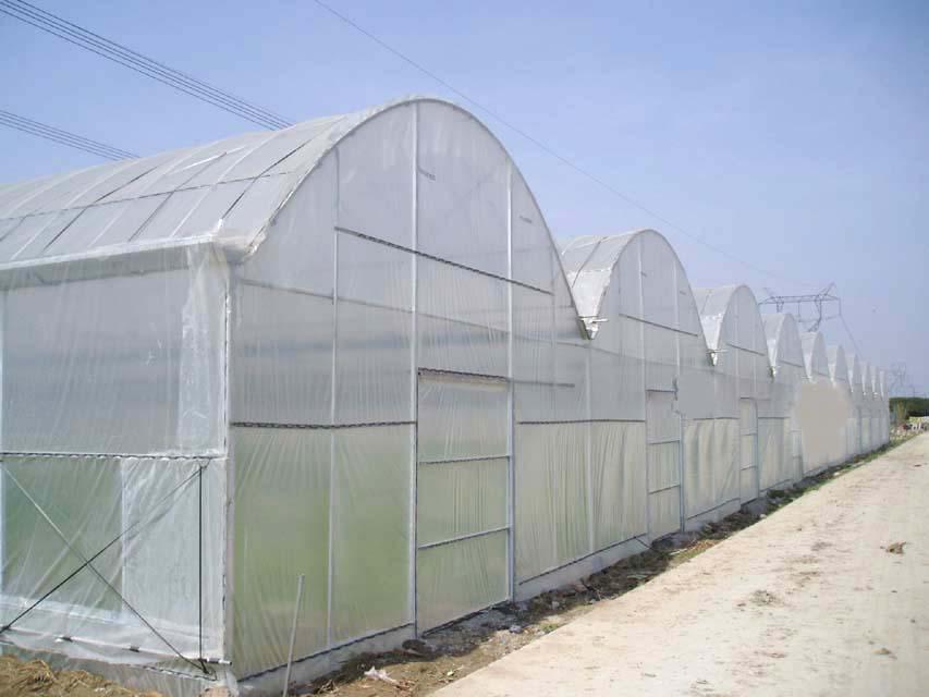 防虫网 防蚊网 防蝇网