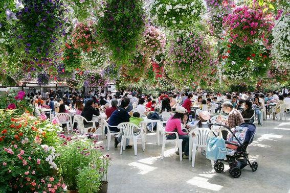 生态阳光餐厅