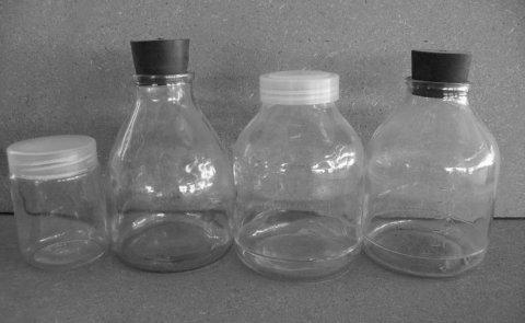 350ml组培瓶,650ml兰花组培瓶,菌瓶,500ml组培瓶