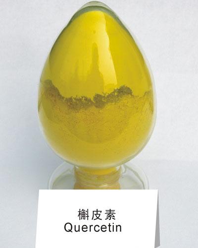 厂家 供应 槲皮素 栎精 槲皮黄素