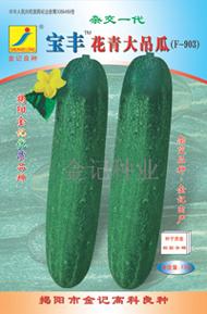 黄瓜种子:宝丰花青大吊瓜种子F-903