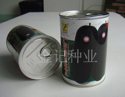 广东良种黑皮冬瓜种子991-100