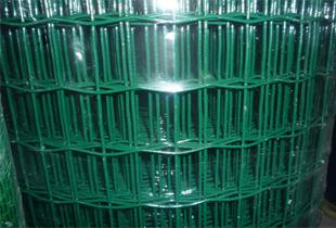 荷兰网 浸塑荷兰网 铁丝绿色护栏网
