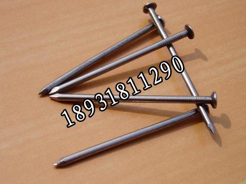 镀锌铁钉 铁钉厂家 普通铁钉