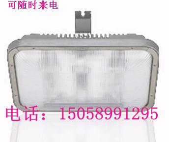 长寿顶灯,NFC9175-WJ40W,海洋王