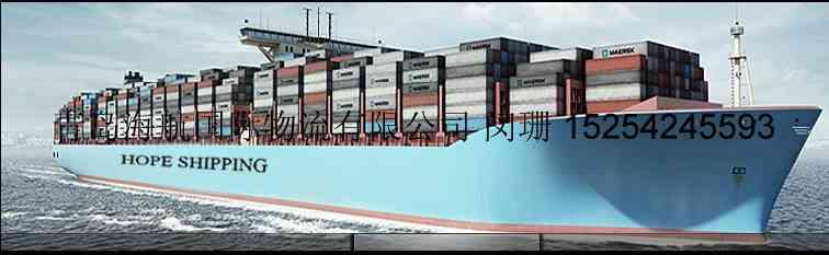 青岛至新加坡槟城巴生巴西古荡雅加达泗水海运