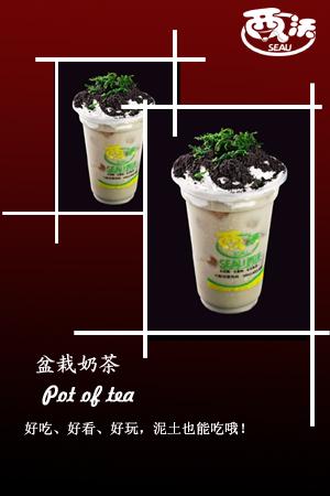 贵州奶茶加盟、奶茶原料、奶茶做法