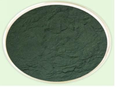 黑升麻提取物——西安源森的主营产品之一