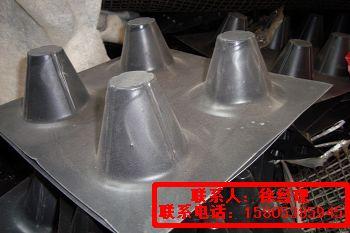 供应哈尔滨排水板高密度聚乙烯排水板