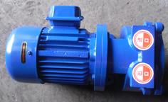SK-0.4/0.8水环式真空泵