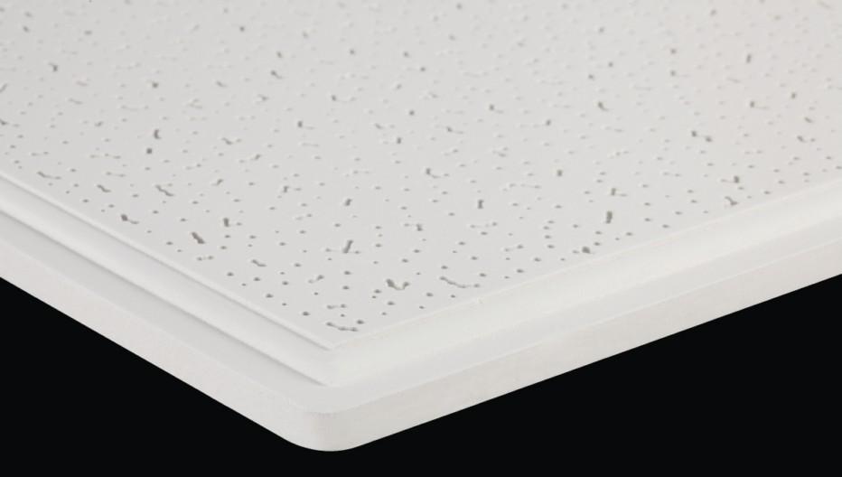 TY硅钙天花板