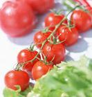 番茄红素  Lycopene