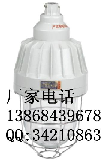 BAD61防爆灯 BAD61一体式隔爆型防爆灯 防爆金卤灯