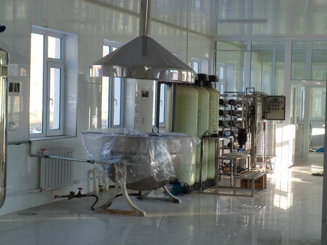 纯化水制备装置 纯水设备 纯水