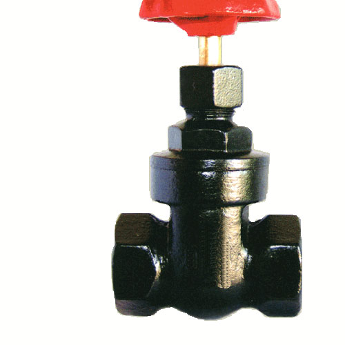 铸铁丝扣闸阀Z15T-16 铜板铜杆丝扣闸阀 铸铁内螺纹楔式闸阀