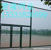 体育围网-运动场围网-学校护栏网-学校围网-操场护栏网