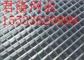苗床网-温室苗床网