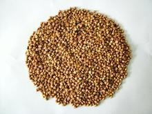 荞麦香精,优质食品添加剂香精香料