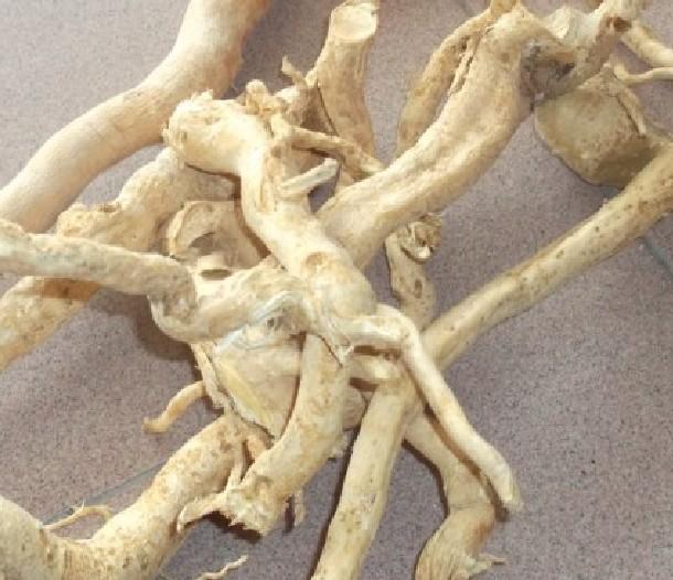 西安清乐生物科技有限公司销售部的形象照片