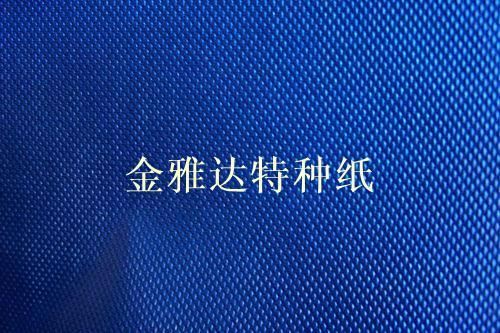 蓝色串珠纹环保珠光充皮纸