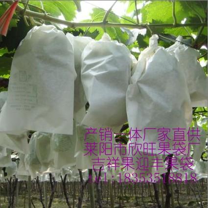 供应葡萄袋,葡萄果袋,果袋18353518818