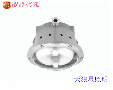 海洋王NFC9176价格,NFC9176长寿顶灯