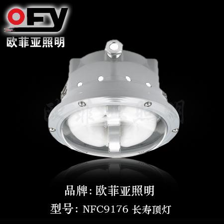 NFC9176长寿顶灯
