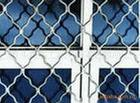 美格网护栏网、养殖护栏网