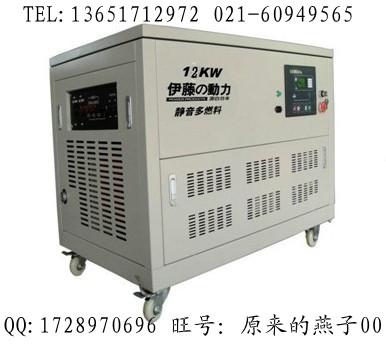 供应12kw汽油发电机_家用汽油发电机