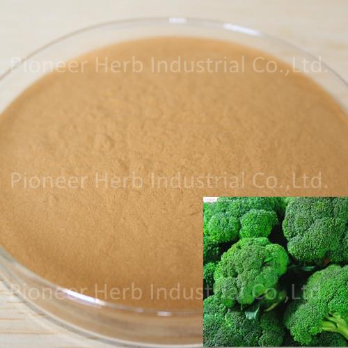 西兰花籽提取物Broccoli Seed Extract