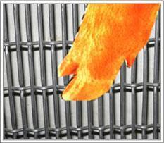 优质猪床网轧花网不锈钢轧花网厂家直销