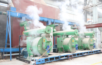生物质木屑燃料颗粒成型机