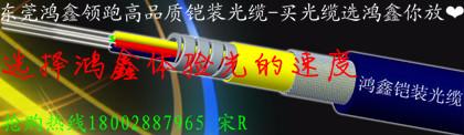 东莞市鸿鑫光缆科技有限公司  铠装光缆的生产研发销售