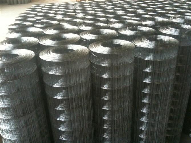 侵塑电焊网