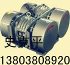 WHZY系列直线自振源(连体振动电机 双胞胎电机)