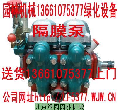 供应高山输水泵隔膜泵/金蜂480/240泵/园林机械绿化设备