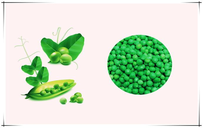 豌豆淀粉设备-规模化生产优质豌豆淀粉的现代化设备