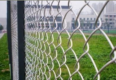 安平绿化网栏,网片 作业场区隔离网,马路绿化带防护网