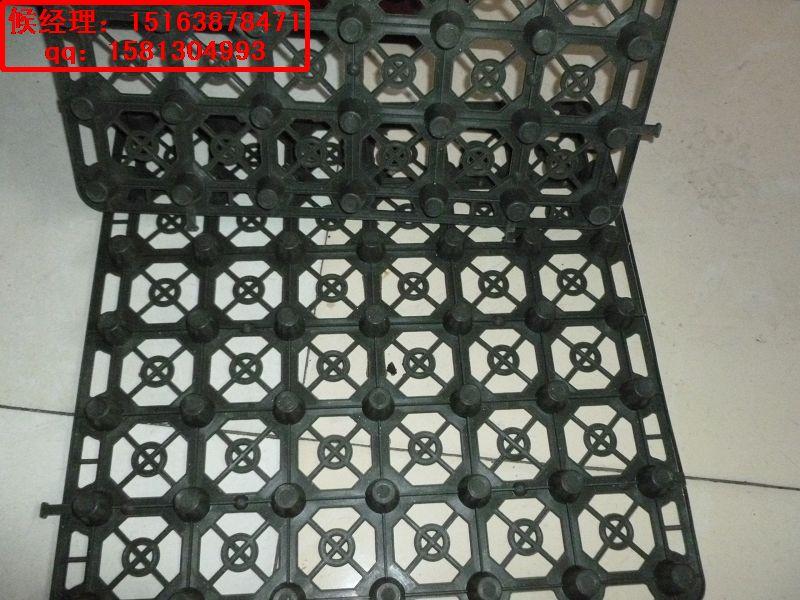 供应南昌排水板的厂家%景德镇排水板500*500