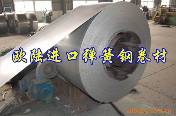 进口弹簧钢板材 进口弹簧钢圆棒 现货供应