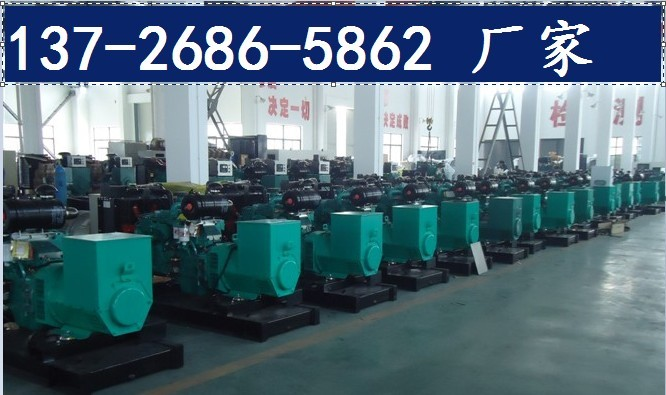 广州钟落潭竹料发电机组销售维修配件保养发电机组出租租赁