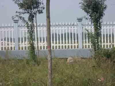 供应铁艺护栏,铁艺围栏,铁艺栅栏