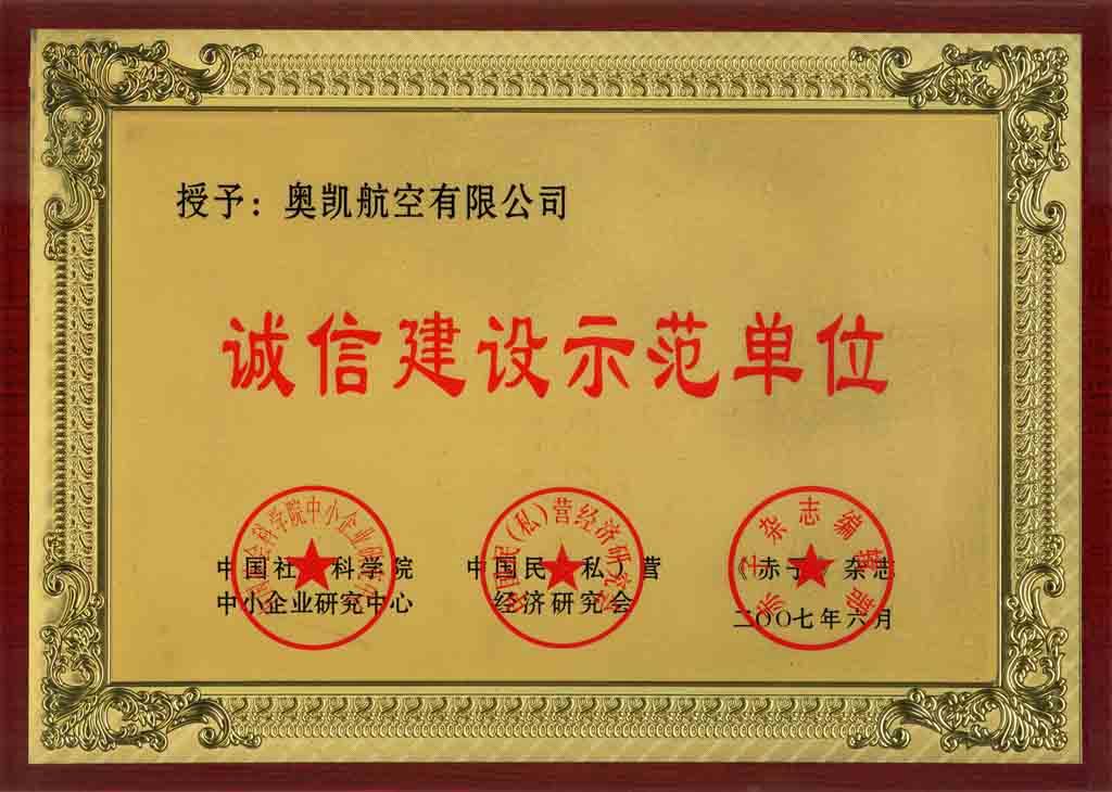 广州金箔奖牌制作公司,制作示范单位奖牌,企业荣誉奖牌定做