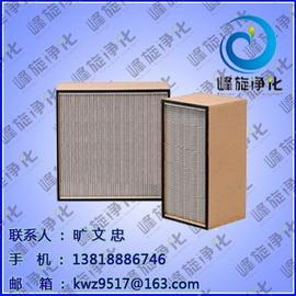 有隔板高效过滤器:疾病预防 上海峰旋