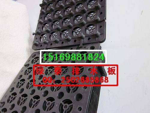 供应萍乡H-20蓄排水板厂家【价格趋势15169881824】