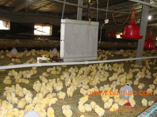 供应养殖取暖设备特点