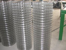 生产电焊网|不锈钢电焊网