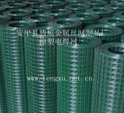 安平县腾旭金属丝网制造厂|热镀锌电焊网