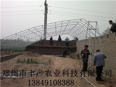甘肃蔬菜大棚建造 兰州日光温室建设公司