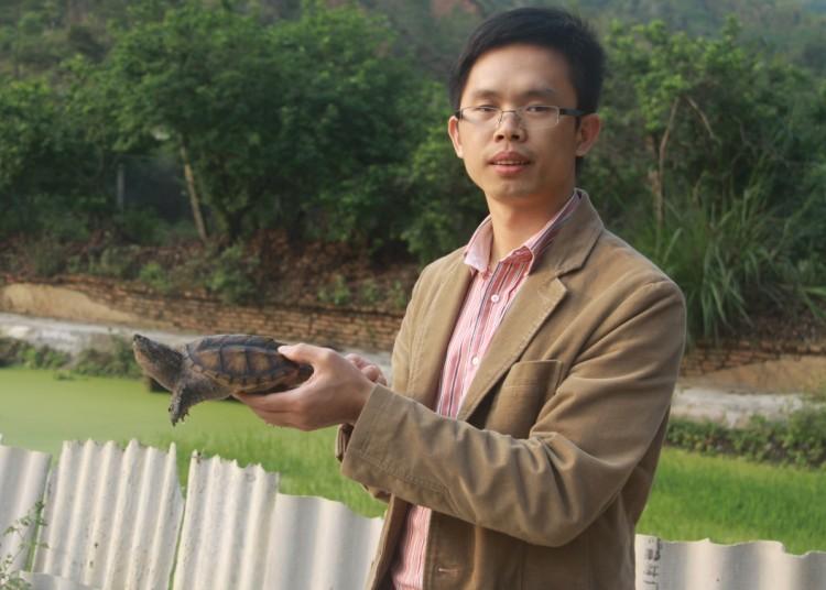 2013年佛鳄龟苗如何预订才能确保万无一失?